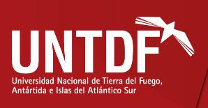 La Universidad Nacional de Tierra del Fuego se pronuncia contra el Voto Electrónico